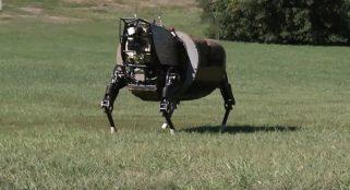 Marines kill loud, four-legged robot