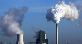 Air pollution may cause brain damage