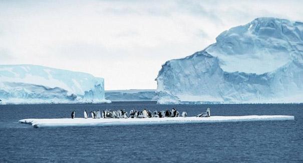 Antarctic iceberg melting near Earth's equator