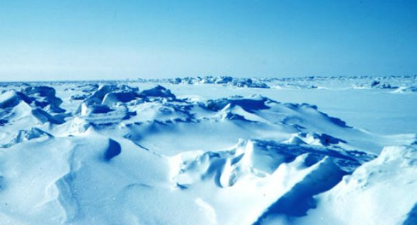 Sea level pressure may have slowed Arctic ice melt, but region is still in trouble