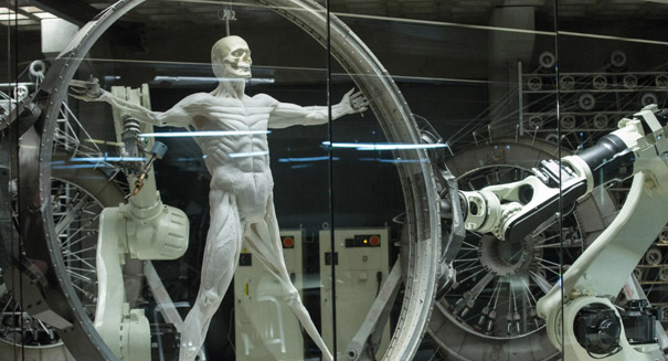 Muscle-like actuators could help create more delicate robots
