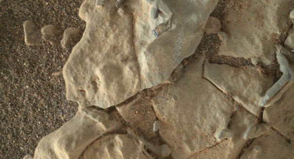 Mysterious tube-like features on Mars could be trace fossils