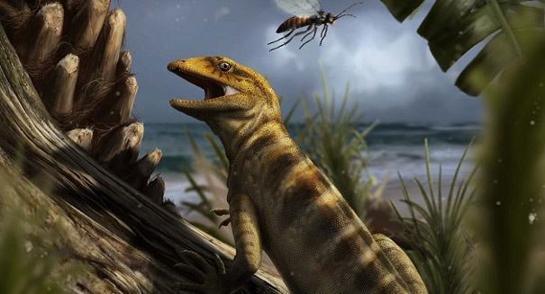 Oldest known lizard fossil uncovered in Italian Alps