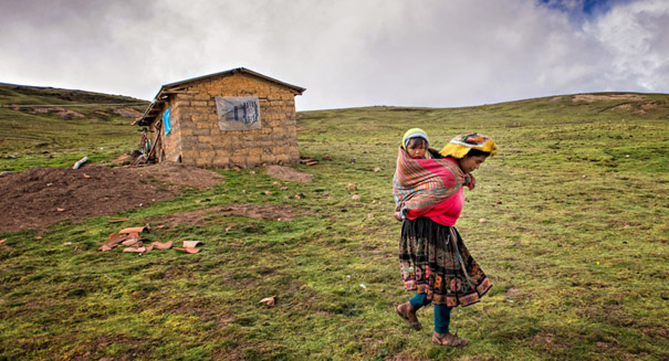 Peruvians carry a gene variant that has a major impact on height