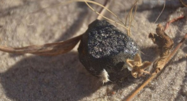 Remnant of 'fireball' meteor found in Botswana