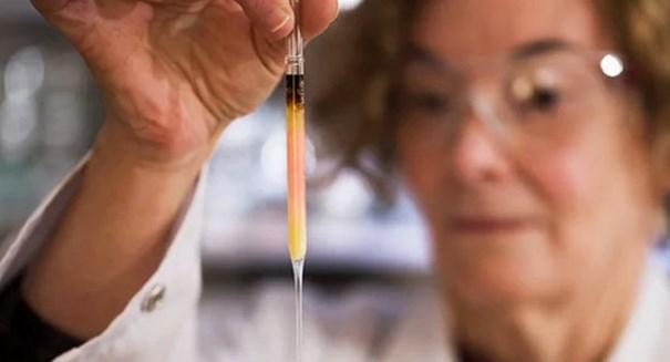 Researchers discover world's oldest colors under Sahara desert