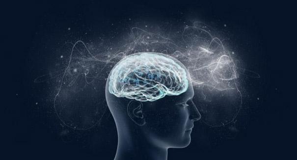 Scientists predict intelligence using brain scans