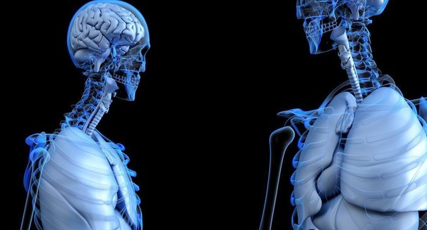 Scientists use X-rays to train artificial intelligence