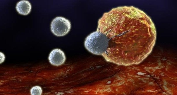 Scientists use nanoparticles to boost immune system tumor defense