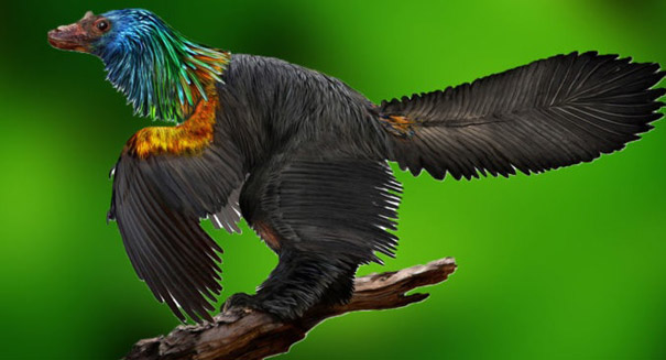 Velociraptor-like dinosaur shimmered with the colors of the rainbow