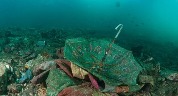 World's largest pile of ocean garbage twice the size of Texas
