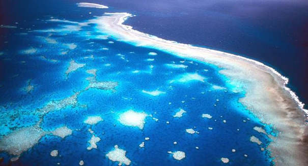 Reports of Great Barrier Reef death greatly exaggerated
