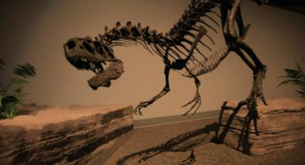 Secrets of incredibly well-preserved armored dinosaur revealed