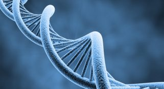 Moving image stored in bacterial DNA