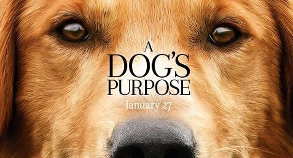A Dog's Purpose cast defends film against boycotts