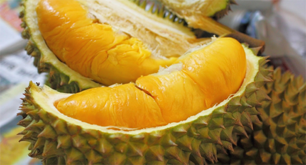 Genetic theory shows how durians got their unpleasant smell