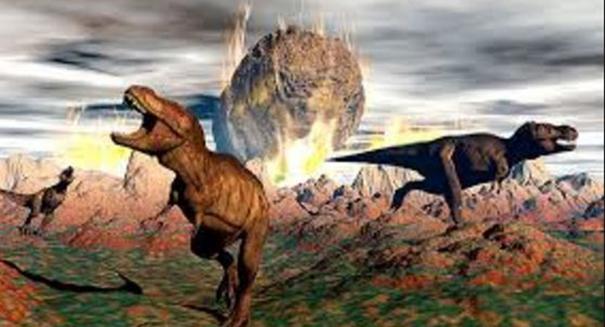 Sixth mass extinction has begun, say scientists
