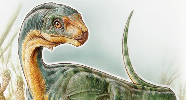 Unusual new dinosaur find may be evolutionary