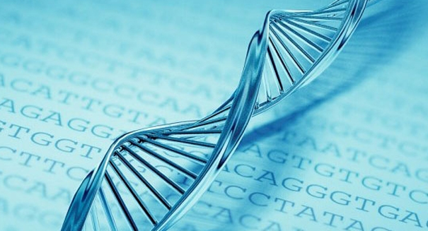 China first to begin human gene-editing