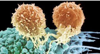 Finally, HIV breakthrough has been made