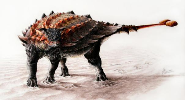 Plant-eating dinosaurs may have dined on crustaceans, study reports
