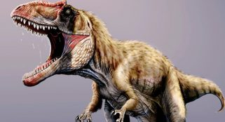Evidence suggest that a dinosaur shed its teeth to form a beak