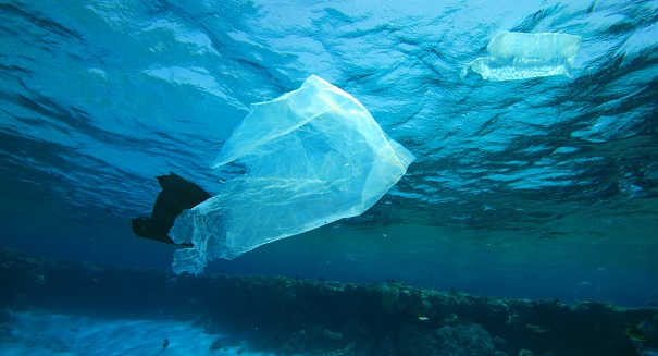 Global plastics waste could be as destructive as climate change, ecologists warn