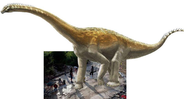 Longest sauropod trackway discovered in France