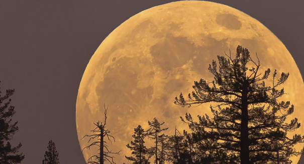 Moon may have once had an atmosphere, study reports