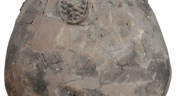 Archaeologists find 8,000-year-old wine in Caucasus